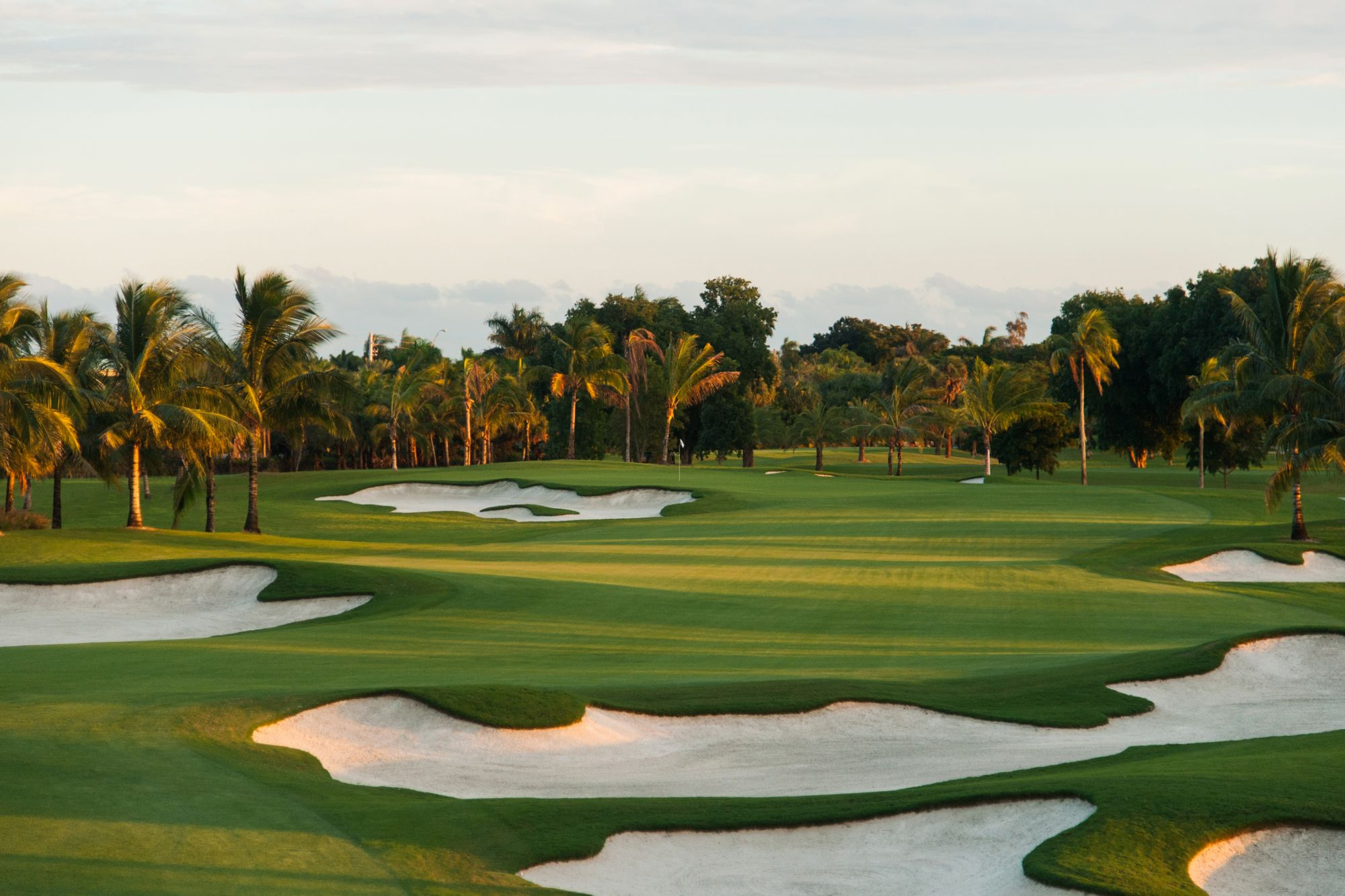 Trump National Doral Golf Courses