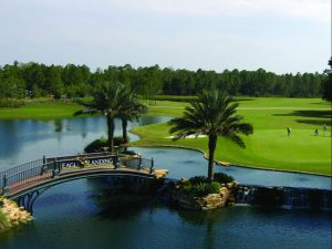 Eagle Landing Florida Golf Course Pakcage